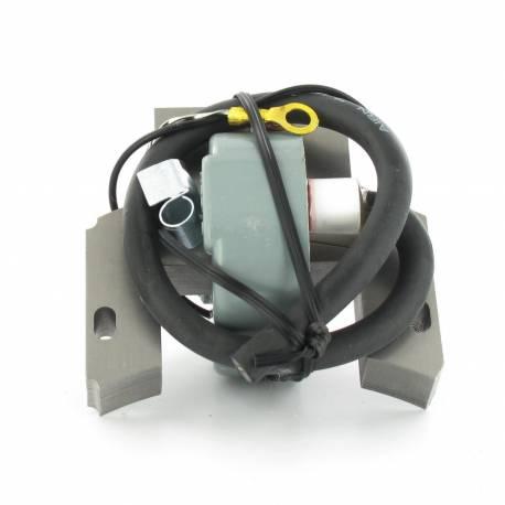 bobine d 39 allumage briggs et stratton 298502 395488 697036 pi ces tracteur tondeuse. Black Bedroom Furniture Sets. Home Design Ideas
