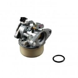 Carburateur BRIGGS ET STRATTON 398901 - 492498